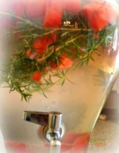 Watermelon Rosemary Refresher
