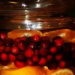 Festive Cranberry Orange Water