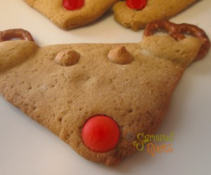 GlutenFree_reindeercookie